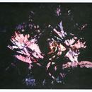 Flora thumbnail