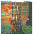 Redwoods thumbnail