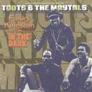 Funky Kingston / In The Dark thumbnail