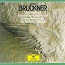 Bruckner: Symphony No. 8 / Wagner: Siegfried-Idyll thumbnail