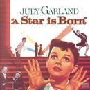 A Star Is Born thumbnail