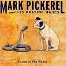 Snake In The Radio thumbnail